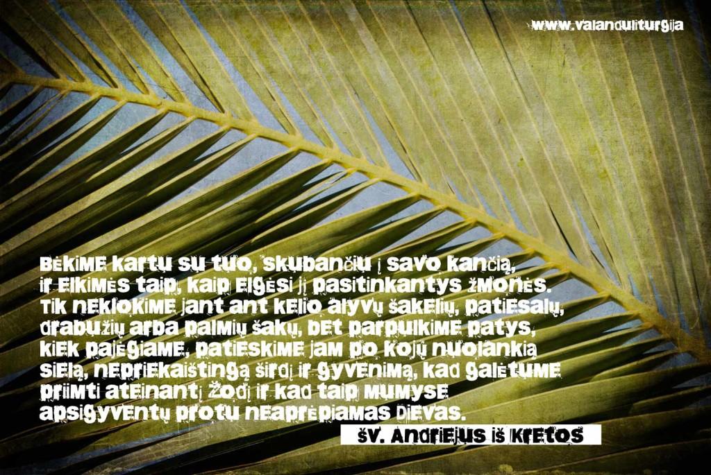 Andriejus